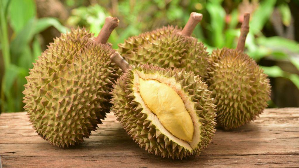 Manfaat Durian Bagi Kesehatan
