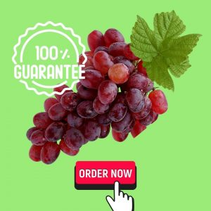 Anggur Merah Fresh 1 Kg