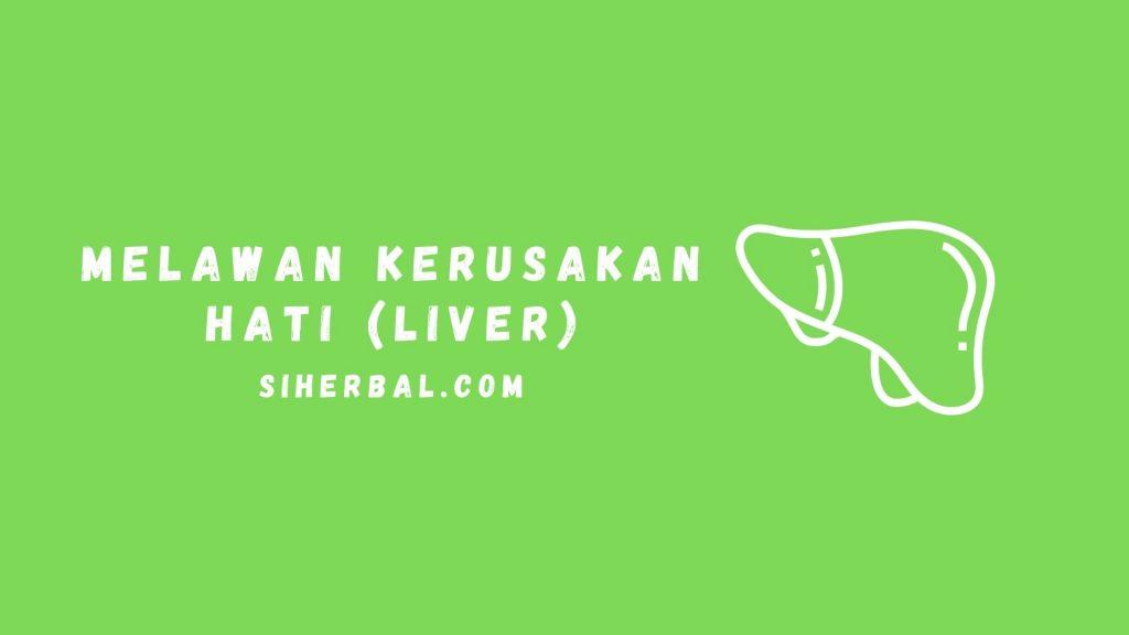Melawan kerusakan hati (liver)