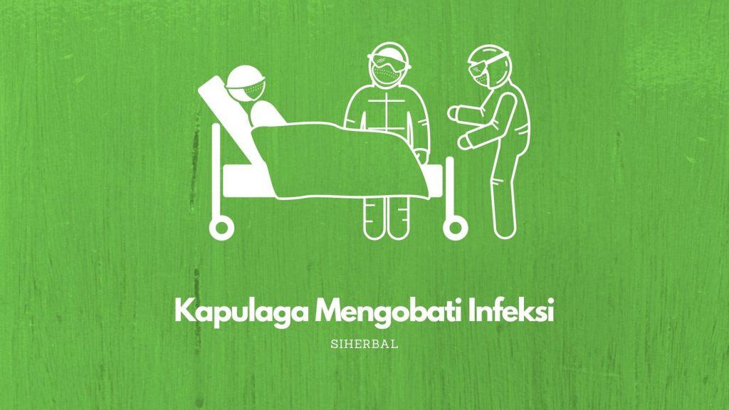 Kapulaga Mengobati Infeksi